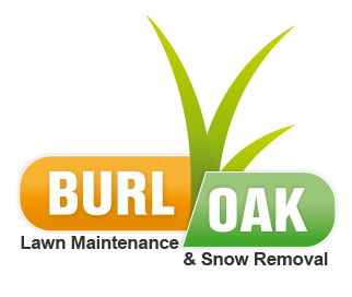 Lawn and Garden, Lawn and Garden, Snow Removal